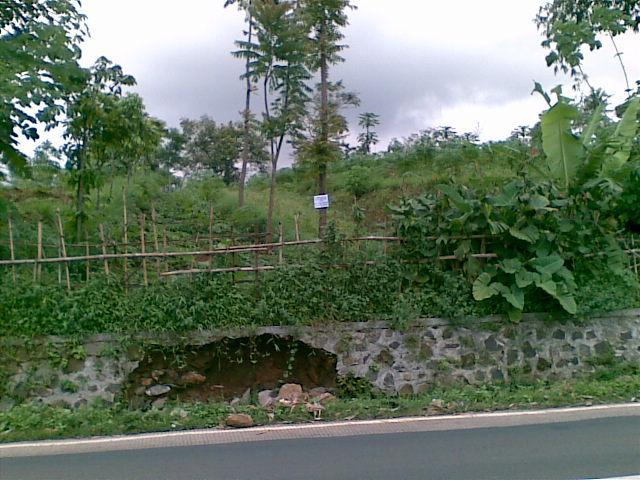 Foto: Dijual Tanah Urug