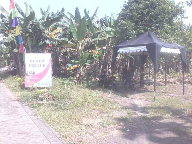 Foto: Tanah Kavling Graha Panjer